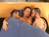 A ellos también les gusta dormir juntos