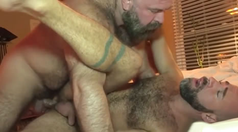 Osos maduros follándose el culo